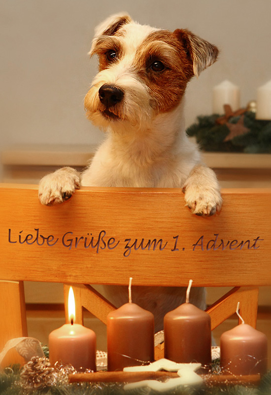 Einen Lieben Gruß Zum 1 Advent